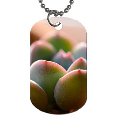 Tag08 By Wongecho   Dog Tag (two Sides)   X6rli1kdzp0j   Www Artscow Com Back