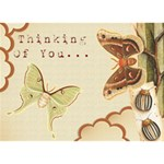 Thinking Of You Card - Heart Bottom 3D Greeting Card (7x5)