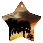 Tropical Vacation Ornament (Star)