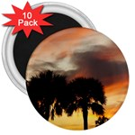 Tropical Vacation 3  Magnet (10 pack)