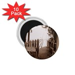 Private Pier 1.75  Magnet (10 pack)