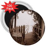 Private Pier 3  Magnet (100 pack)