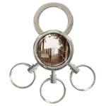 Private Pier 3-Ring Key Chain