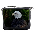 Messenger Bag - American Eagle