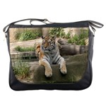 Messenger Bag - Siberian Tiger