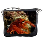 Messenger Bag - Crab