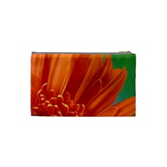 Small Cosmetic Bag By Roberta   Cosmetic Bag (small)   8rwr0cak4pcf   Www Artscow Com Back