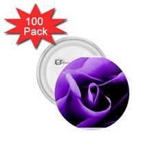 Purple Rose 100 Pack Small Button (round)