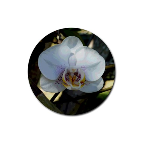 White Orchid Love 1 By Monasol Earthlink Net   Rubber Coaster (round)   Bheb5y0kouwk   Www Artscow Com Front
