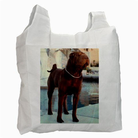 Sonny By Joanne Cameron   Recycle Bag (one Side)   612s8cutezyp   Www Artscow Com Front