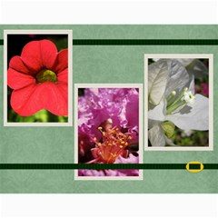 Damask Calendar For 2013 By Mim   Wall Calendar 11  X 8 5  (12 Months)   2xm01zbe0it5   Www Artscow Com Month