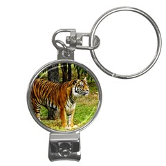 Attentive Tiger Nail Clippers Key Chain from ArtsNow.com Front