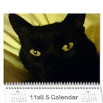 karate Cats - Wall Calendar 11  x 8.5  (12-Months)