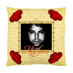 I Love You By Radu   Standard Cushion Case (two Sides)   T8nf4eab6kgn   Www Artscow Com Front