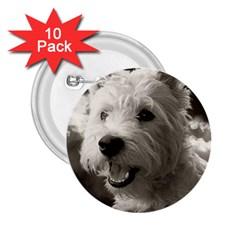 Westie Puppy 10 Pack Regular Button (round)
