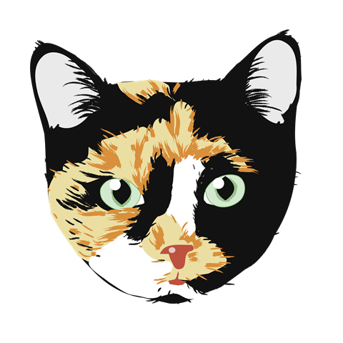 BubbSnugg logo