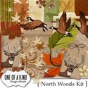 NorthWoods_Kit