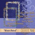 DS_Winter Flake_Prev