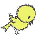 Bird 1 yellow