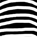 large zebra print paper