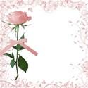 pink spring time4