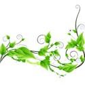 greend_0003_Layer-7