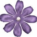 moo_edenscrush_flower1