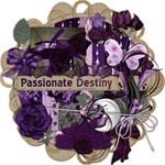 Passionate Destiny