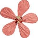BOS BB flower03