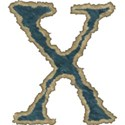 blue lower x