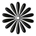 black&white_em_05a