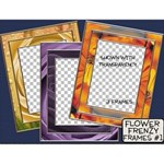 Flower Frenzy Frames