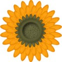 BOS SH sunflower01