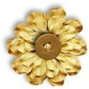 FLOWER2_aberdeen_mikkilivanos