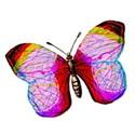 Paper Butterflys - 07
