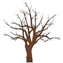 jss_happyfallyall_tree 1