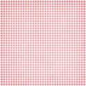 jss_tutucute_paper gingham 2