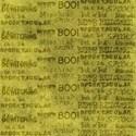 bos_sn_paper09