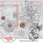 Winter Wonder Kit