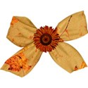brown flower bow