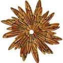 brown flower 7