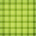jss_joy_paper plaid 1