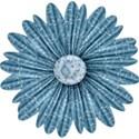 BOS nov08 flower02