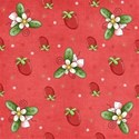 armina_strawberry_pp4