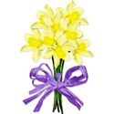 daffodils 01 bow purple