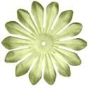 flowerltgreen