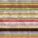 Paper Stripe