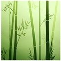 bamboo background green paper