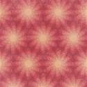 4-pinkstars