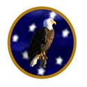 blue star and eagle button